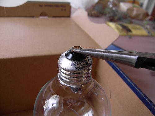 como fazer um terrário com lâmpada passo a passo