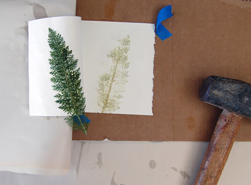 eco-gravura